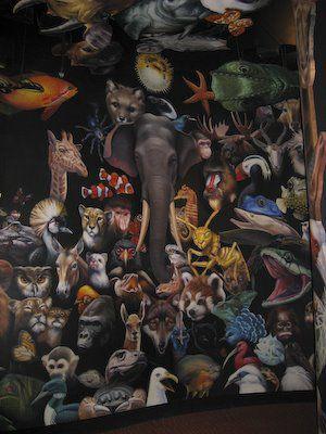20080507-Animals-784482.jpg