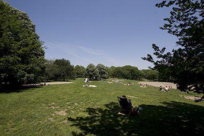 Central Park in NY