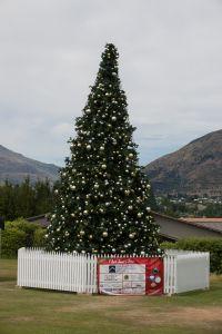Kerstboom Wanaka