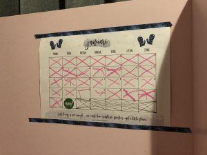 De aftelkalender van Fabienne