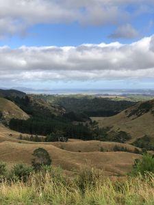 Westkust Nieuw Zeeland (Kawhia)