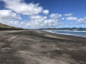 Het zwarte lavazand van Kawhia beach