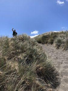 Hoge duinen bedwingen bij Kawhia beach