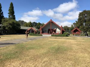 Ceremonie huis Maori in Te Puia