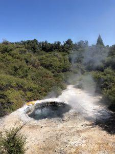 Hot Water Pool in Te Puia