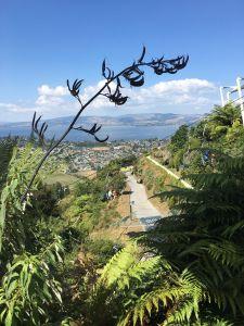 Stoeltjeslift bij Skyline Rotorua