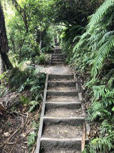 Nog veel meer trappen...
