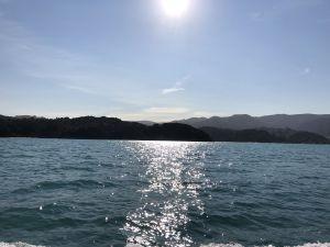 Ondergaande zon Abel Tasman Park