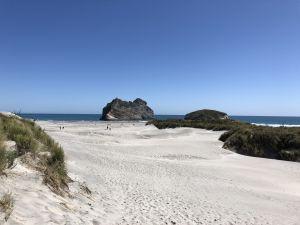 De duinen van Wharariki Beach