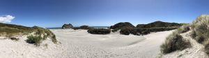 Duinen van Wharariki Beach