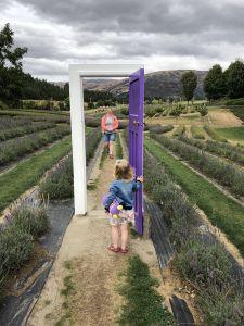 Deur in het veld - Lavendel Farm Wanaka