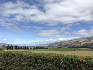 Uitzicht achtertuin - Tarras
